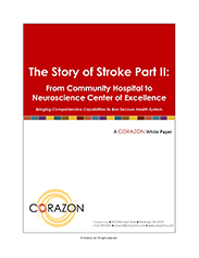 Stroke White Paper 2